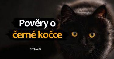 pověry o černé kočce